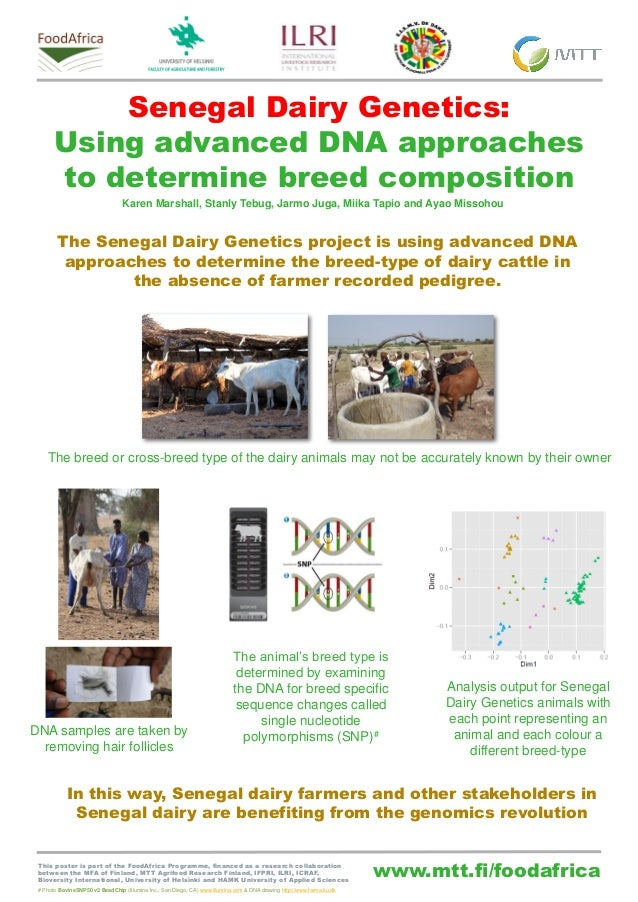 www.mtt.fi/foodafrica Senegal Dairy Genetics: Using advanced DNA approaches to determine breed composition The Senegal Dai...