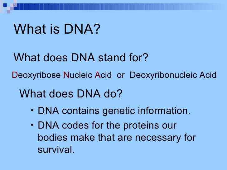 what do the letters dna stand for what do the letters stand for 25510