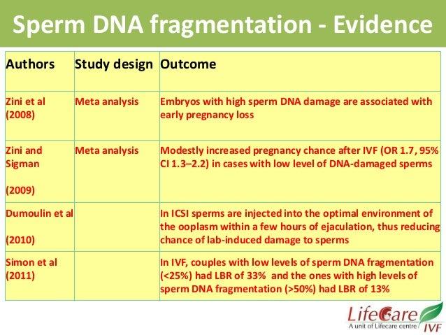 Sperm dna damage due to alcohol