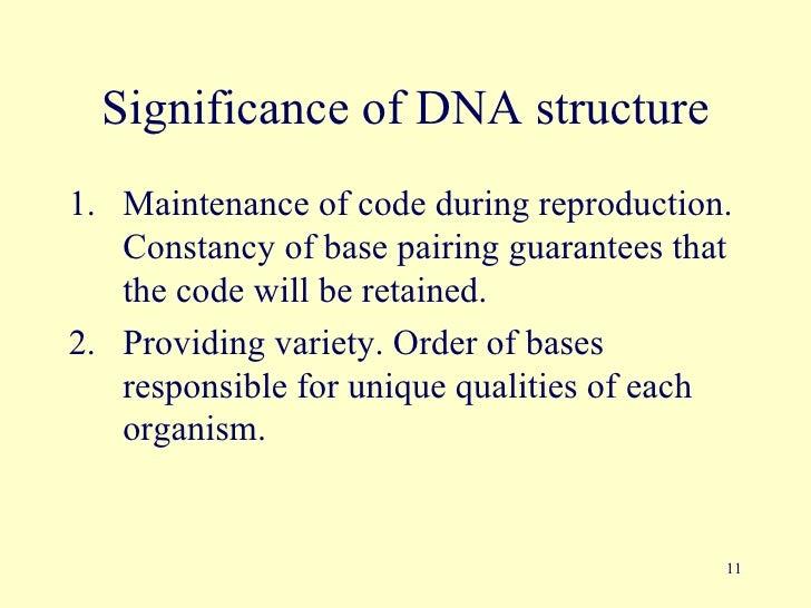 Dna  U0026 Gene Therapy