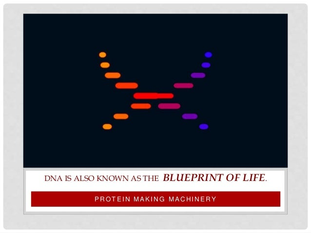 Introduction to dna malvernweather Gallery