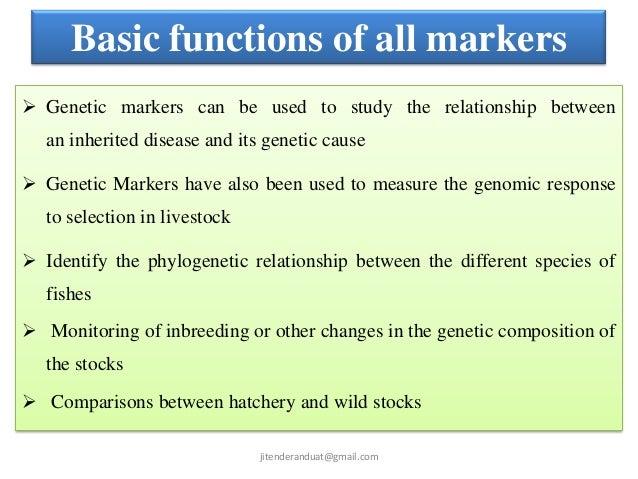 DNA Marker:
