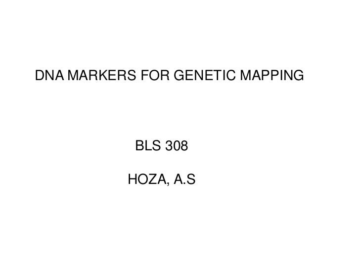 DNA MARKERS FOR GENETIC MAPPING<br />BLS 308<br />HOZA, A.S<br />