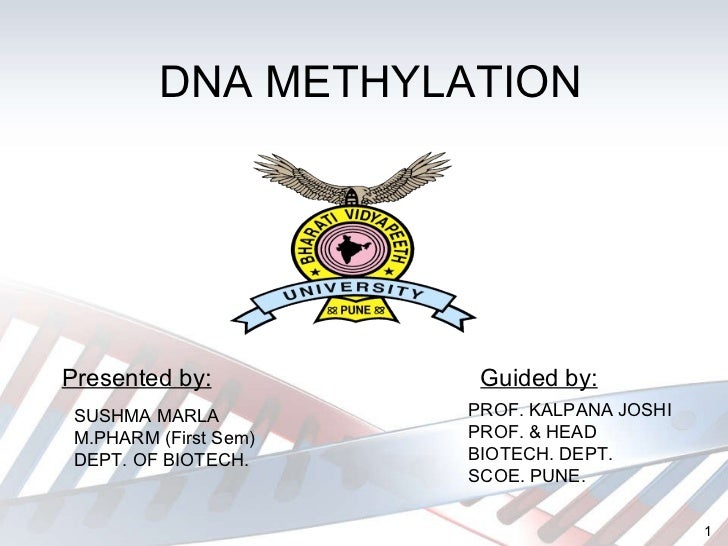 DNA METHYLATION Guided by: Presented by: SUSHMA MARLA M.PHARM (First Sem) DEPT. OF BIOTECH. PROF. KALPANA JOSHI PROF. & HE...
