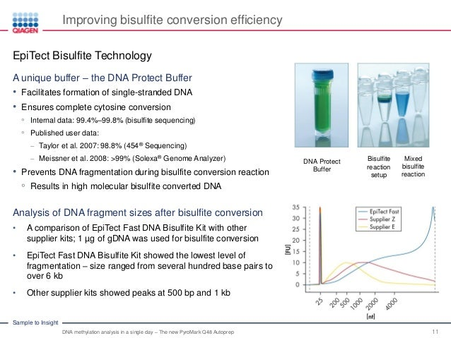 Dna Methylation Analysis in a Single Day - Download the Slides