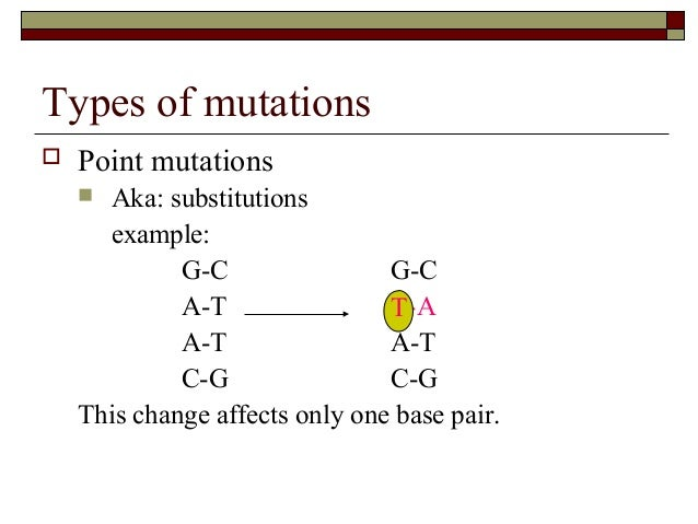 Dna mutations – Types of Mutations Worksheet
