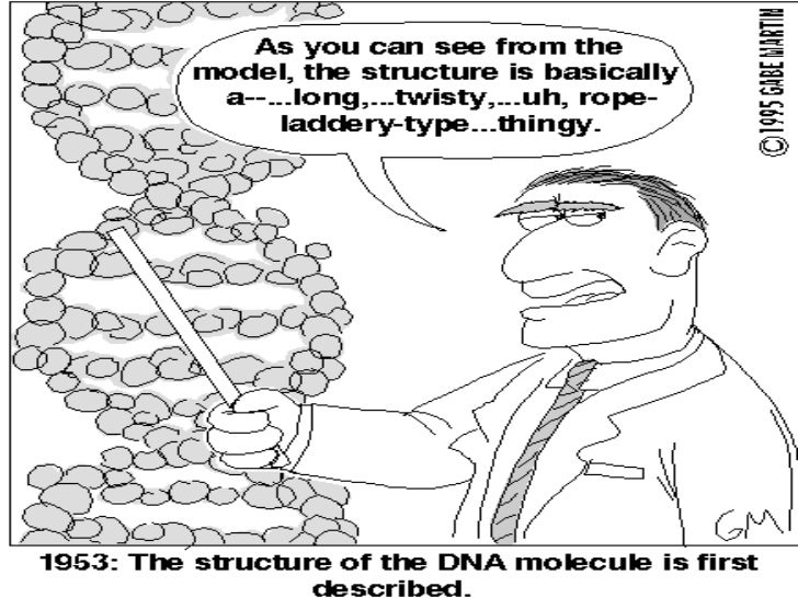 DNA notes REVISED Edition!