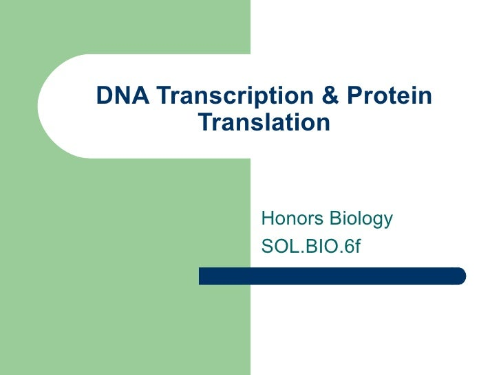 DNA Transcription & Protein Translation Honors Biology  SOL.BIO.6f