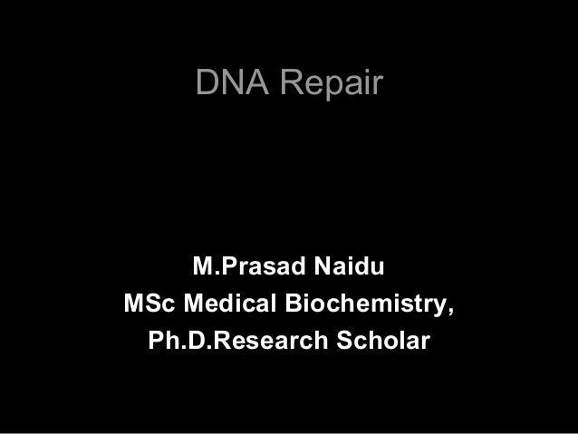 DNA Repair M.Prasad Naidu MSc Medical Biochemistry, Ph.D.Research Scholar