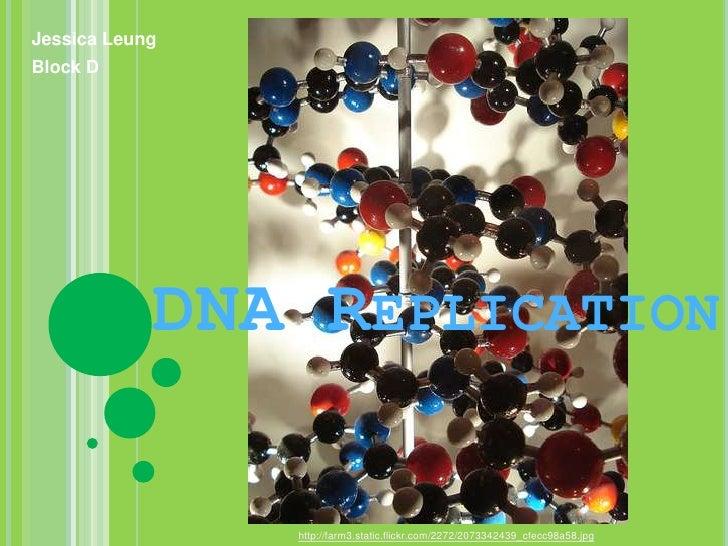 Jessica Leung<br />Block D<br />DNA Replication<br />http://farm3.static.flickr.com/2272/2073342439_cfecc98a58.jpg<br />