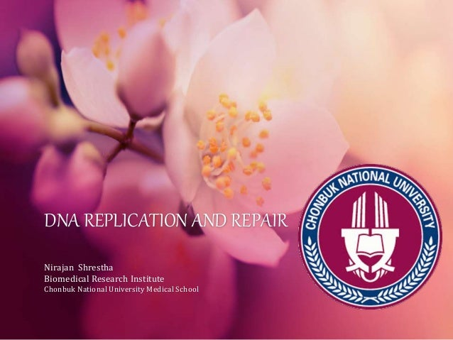 DNA REPLICATION AND REPAIR Nirajan Shrestha Biomedical Research Institute Chonbuk National University Medical School