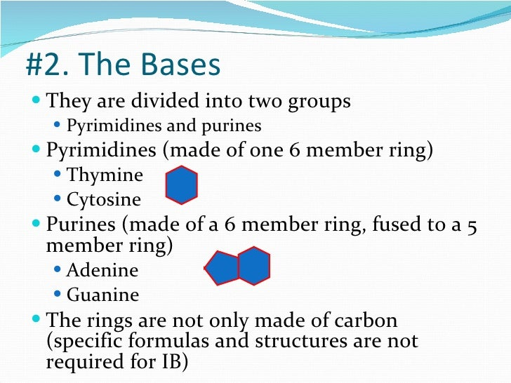 dna structure notes Summary of class notes table of contents dna dna replication rna dna transcription proteins the codon the structure of an amino acid is of 3 parts.