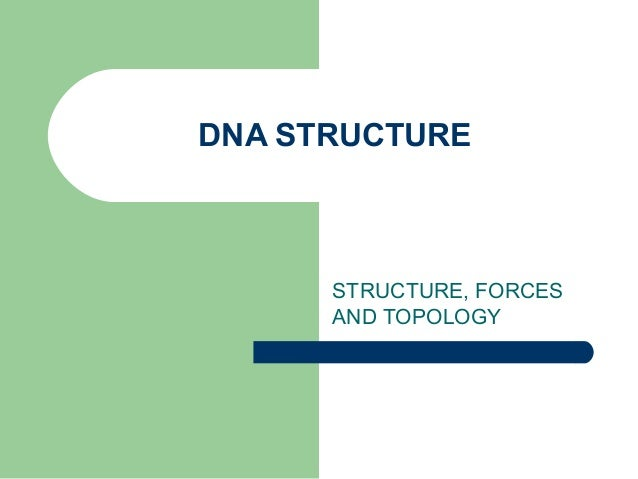 DNA STRUCTURE STRUCTURE, FORCES AND TOPOLOGY