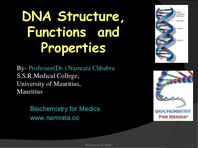 DNA structure, Functions and properties