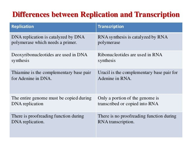 dna replication and biotechnology Biotechnology i –dna transformation eilene lyons revised 1/12/2010 page 10-3 replication of bacterial plasmids originates at a specific dna sequence called the origin of.
