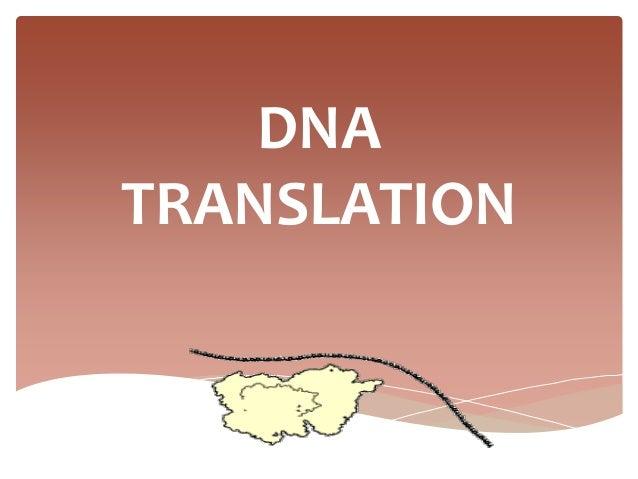 Translation slides.