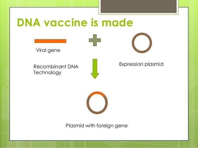 Transformation (genetics)