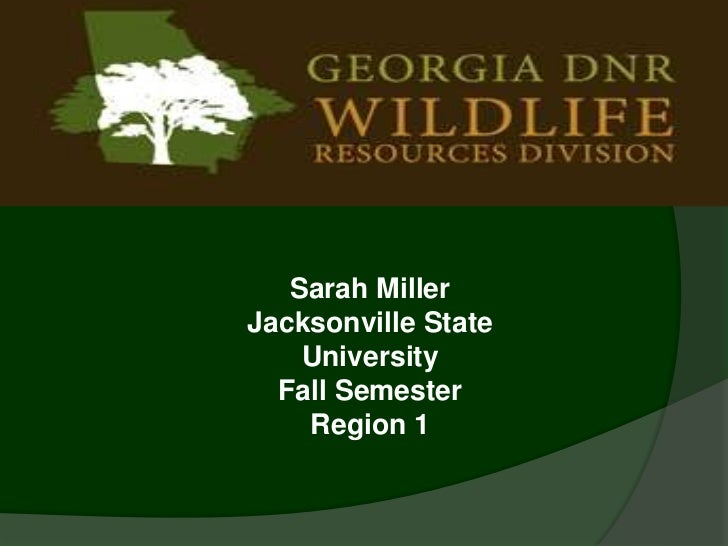 Sarah MillerJacksonville State    University  Fall Semester    Region 1