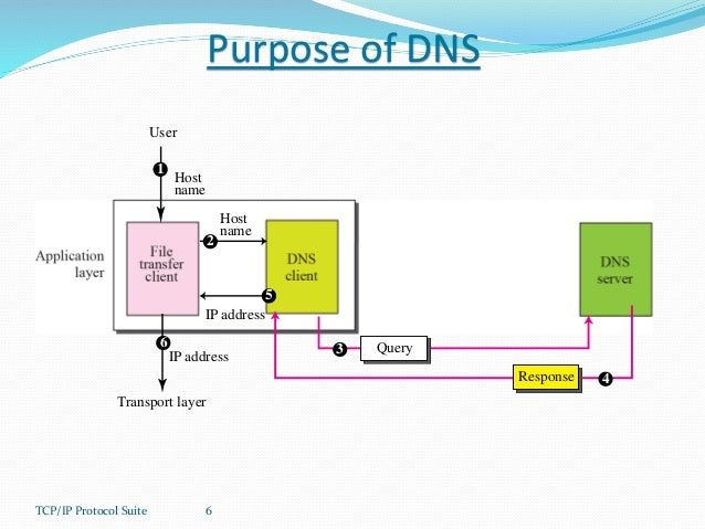 the domain name system dns Domain name system (dns) supernetting & cidr spanning tree protocol (stp)  a dns query is generated when the client needs to resolve a domain name.