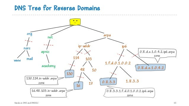 """DNS Tree for Reverse Domains Hands on DNS and DNSSEC 15 net arpa ip-addr 114 """"."""" ip6 103 apnic 48 nsrc www org mail academ..."""