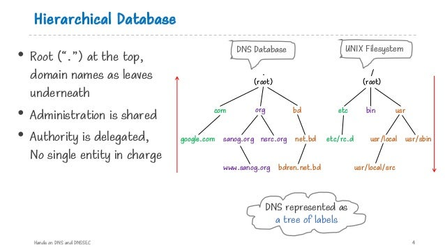 """Hierarchical Database • Root (""""."""") at the top, domain names as leaves underneath • Administration is shared • Authority is..."""
