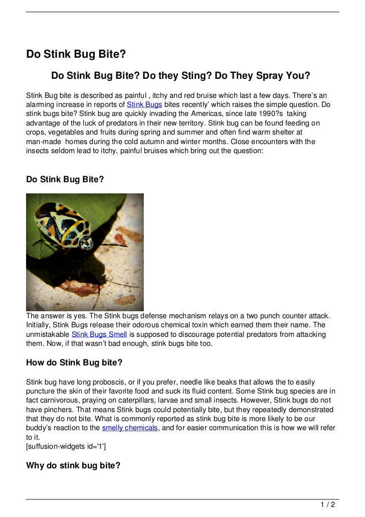Do Stink Bug Bite?       Do Stink Bug Bite? Do they Sting? Do They Spray You?Stink Bug bite is described as painful , itch...