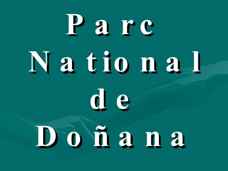 Parc National de Doñana