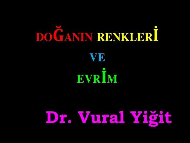 DOĞANIN RENKLERİ VE EVRİM Dr. Vural Yiğit