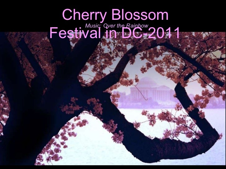 Cherry Blossom Festival in DC-2011 Music: Over the Rainbow