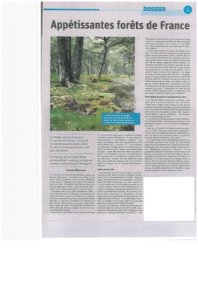 Dossier Libre Immo du 19 décembre 2013: Derrière le sapin, la forêt.