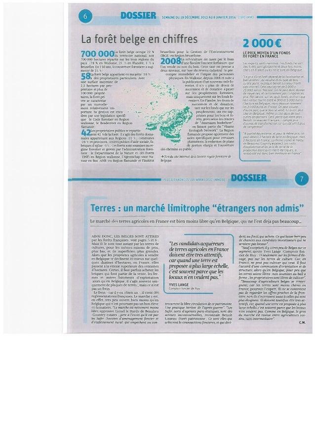 Dossier Libre Immo du 19 décembre 2013: Derrière le sapin, la forêt. Slide 2