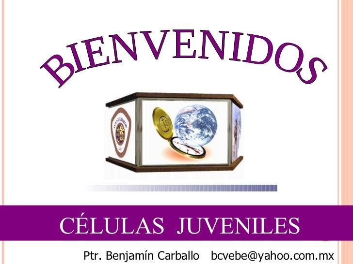 CÉLULAS  JUVENILES BIENVENIDOS Ptr. Benjamín Carballo  [email_address]