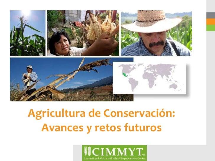 Agricultura de Conservación:  Avances y retos futuros