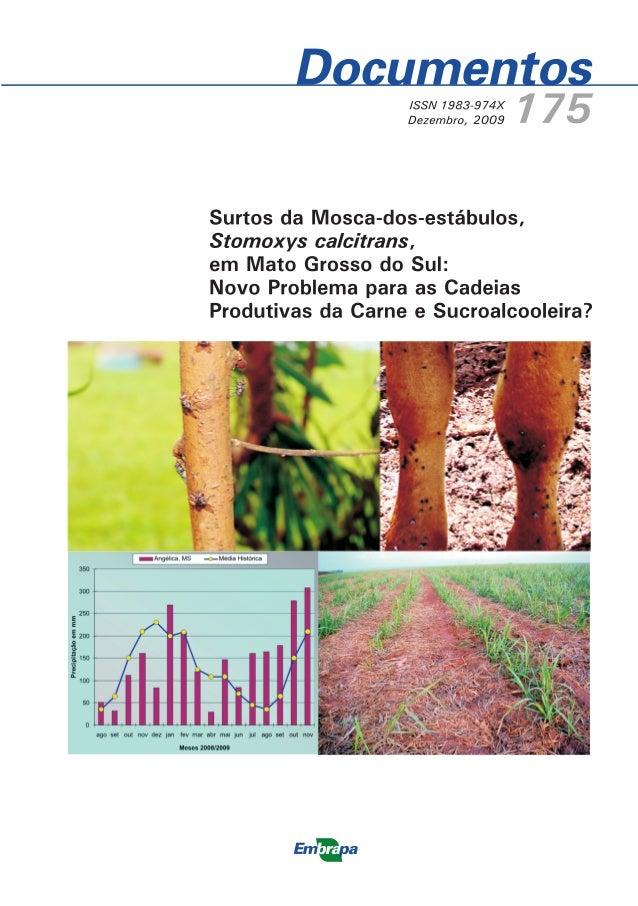 Documentos 175 Surtos da Mosca-dos- estábulos, Stomoxys calcitrans, em Mato Grosso do Sul: Novo Problema para as Cadeias P...