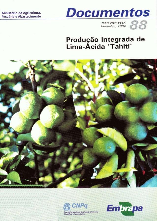 Ministério da Agricultura, Pecuária e Abastecimento  Documentos ISSN 0704-866X Novembro, 2004  Producão Integrada de irn n...