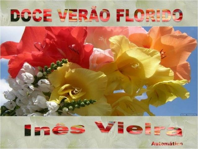 Inês Vieira Imagens: Internet inesdedes@gmail.com