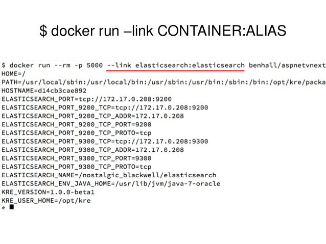 Architecting net applications for docker and container for Docker run consul