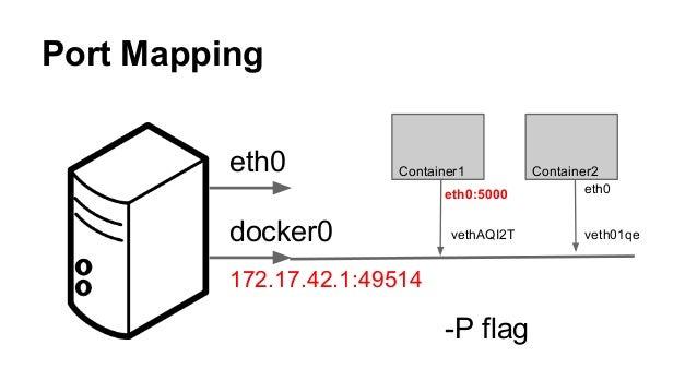 Docker OVS