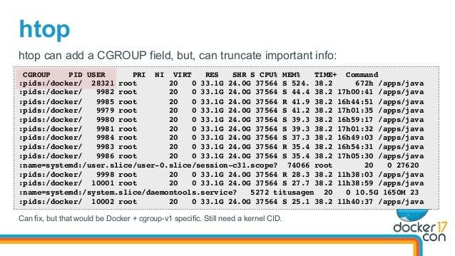 htop CGROUP PID USER PRI NI VIRT RES SHR S CPU% MEM% TIME+ Command :pids:/docker/ 28321 root 20 0 33.1G 24.0G 37564 S 524....