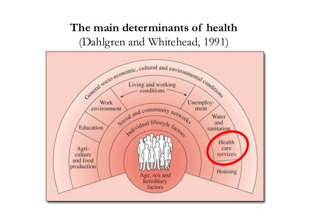 explain the main determinants of health Beyond health care: the role of social determinants in promoting health and health equity  social determinants of health are the conditions in which people are born,.