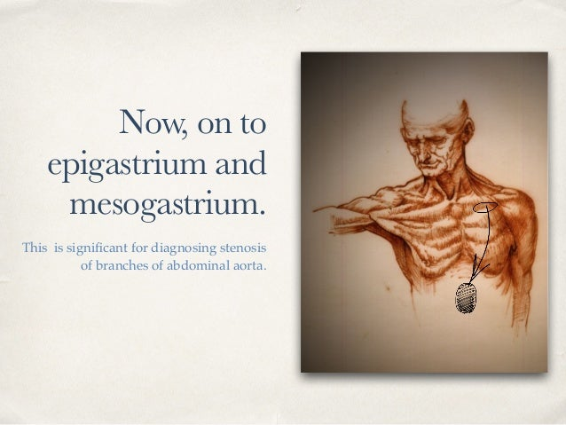Now, on to epigastrium and mesogastrium. This is significant for diagnosing stenosis of branches of abdominal aorta.