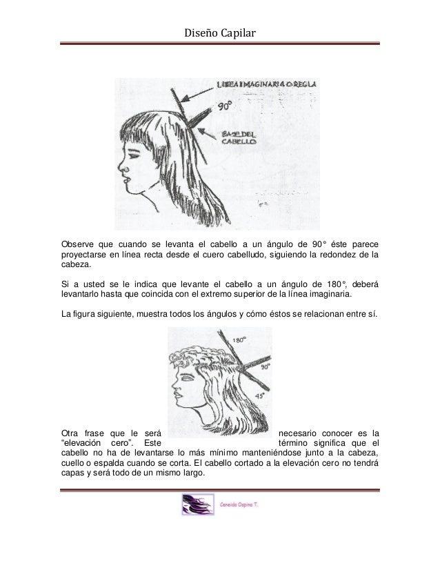 Documento de apoyo Diseño Capilar.