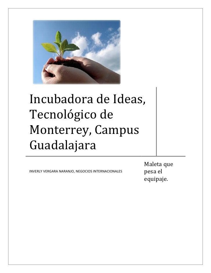 Incubadora de Ideas, Tecnológico de Monterrey, Campus Guadalajara                                                     Male...
