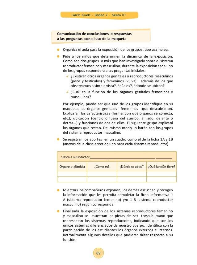 Único Sistema Reproductivo Femenino Etiquetado Motivo - Imágenes de ...