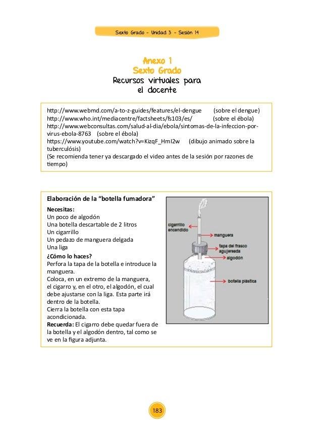 Anexo 1 Sexto Grado Recursos virtuales para el docente http://www.webmd.com/a-to-z-guides/features/el-dengue (sobre el den...