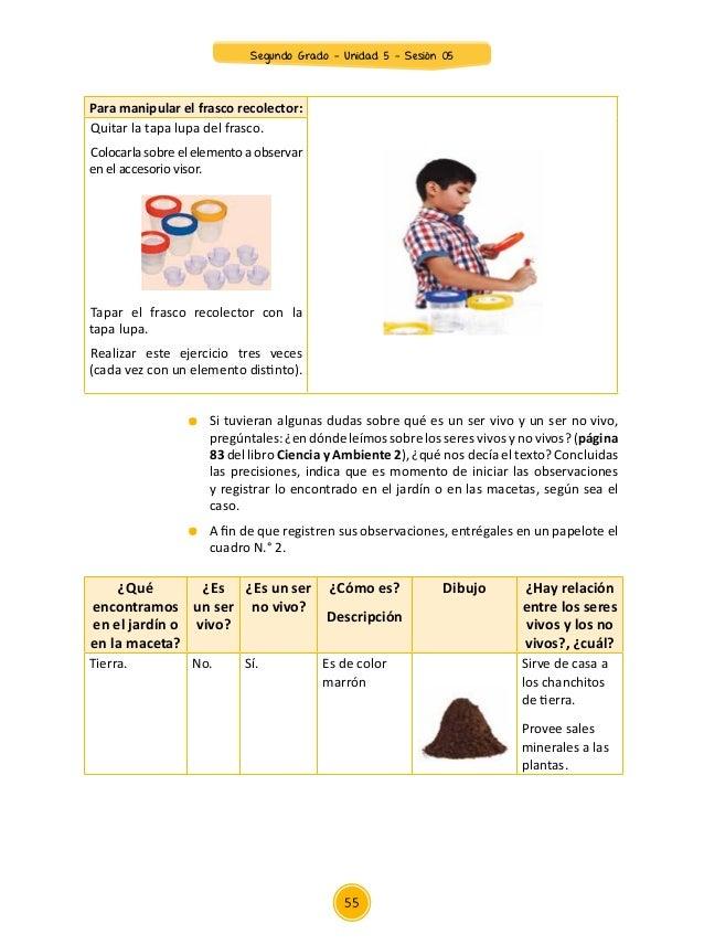 Documentos primaria sesiones unidad05 segundo grado for Como quitar las hormigas del jardin
