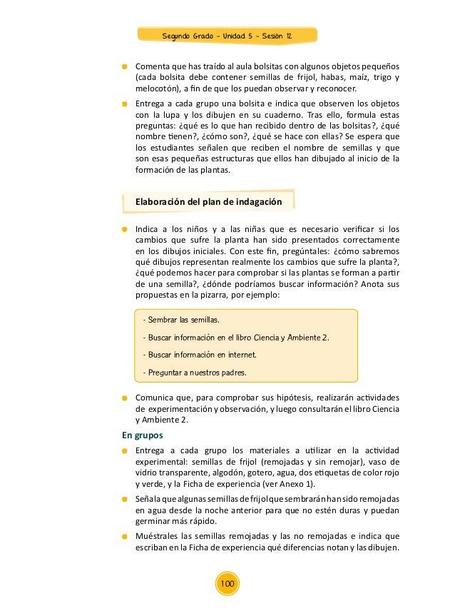 Documentos primariasesionesunidad05segundo gradointegrados2gu5