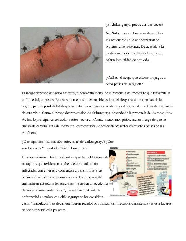 ¿El chikungunya puede dar dos veces?  No. Sólo una vez. Luego se desarrollan  los anticuerpos que se encargarán de  proteg...
