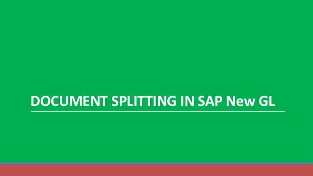 DOCUMENT SPLITTING IN SAP New GL