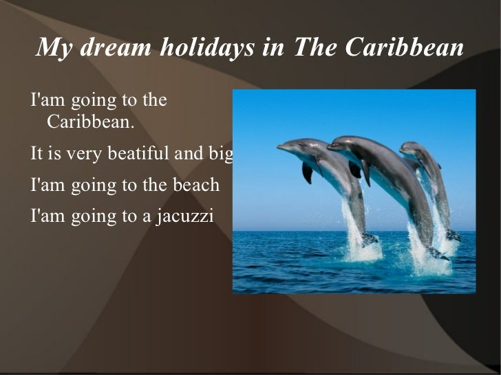paragraph on my dream holiday